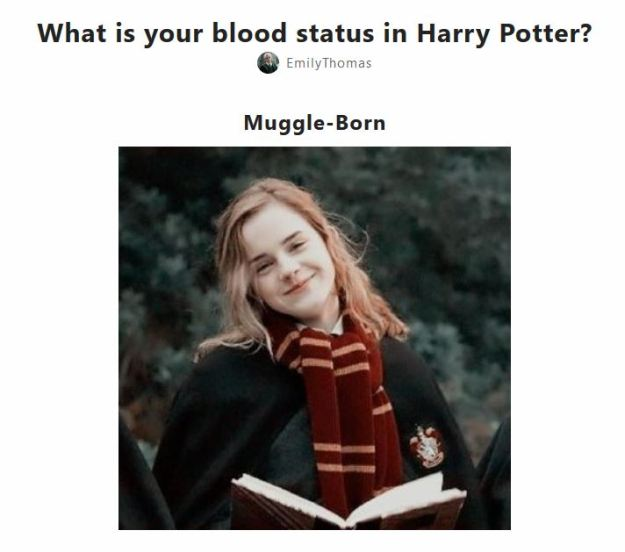 Whimsy029_What is your blood status in Harry Potter.JPG